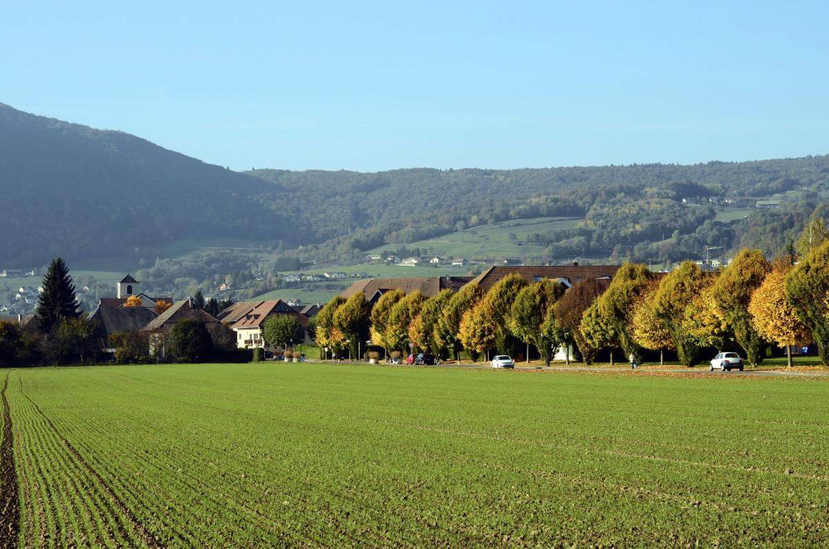 Ville d'Epagny Metz-Tessy | Haute-Savoie